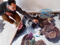 3Д подове - 3Д под - Морско дъно, рибки, корали.